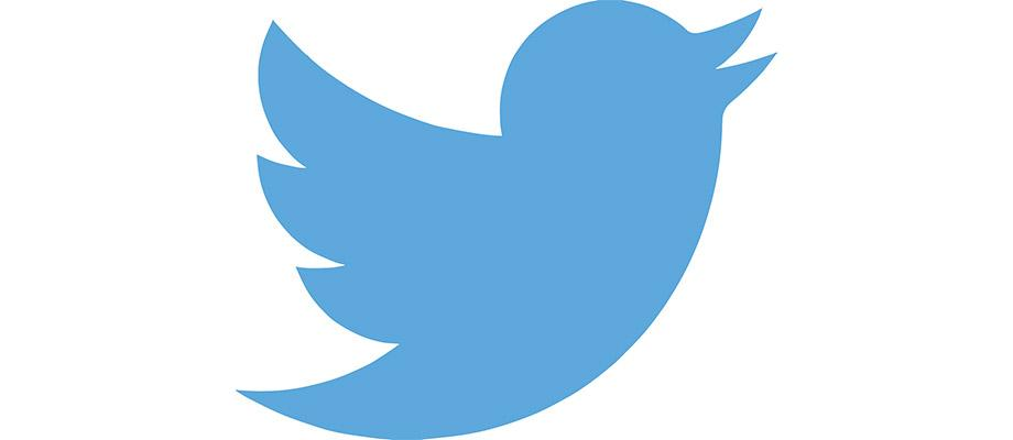 Twitter logo is a Pictorial Mark